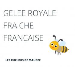 Gelée royale fraîche Française